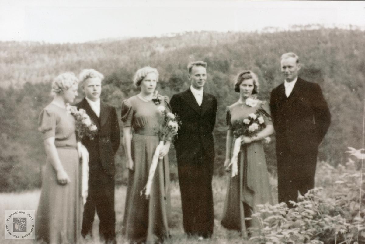 Tredobbelt bryllup i Brandsdal, Grindheim senere Audnedal.