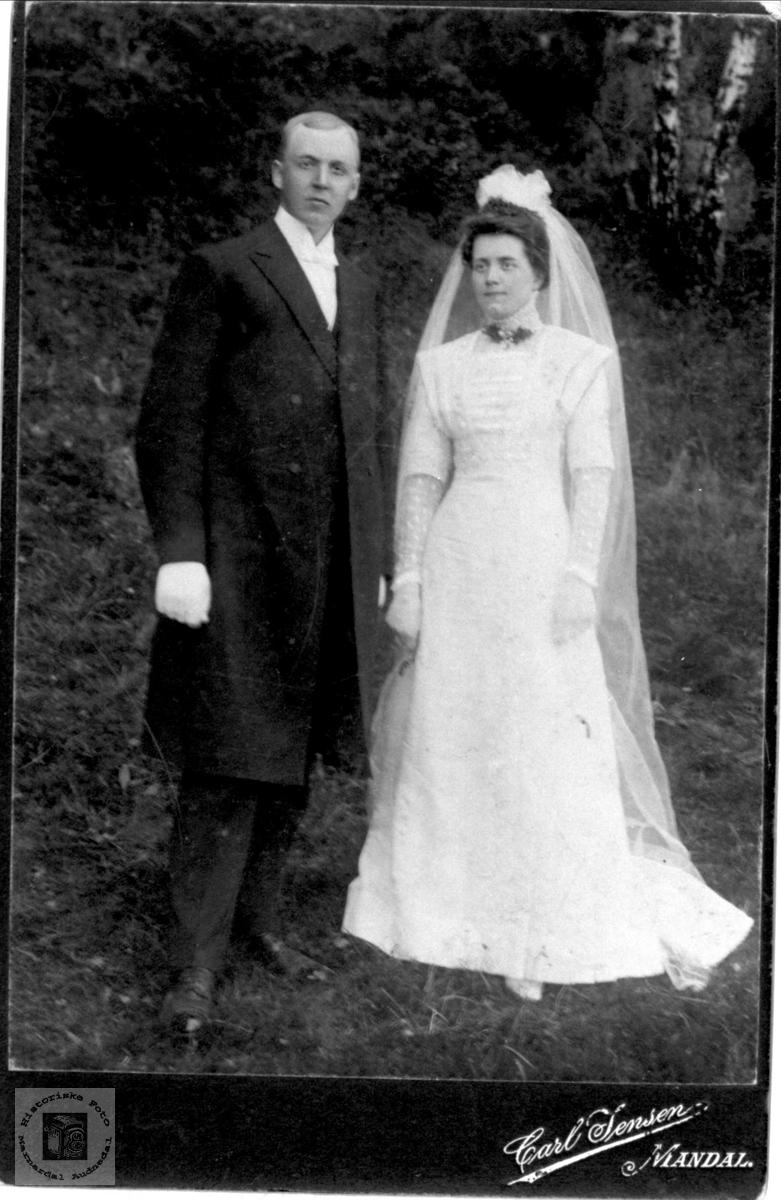 Brudebilde av Nils og Olevine Holbek, Øvre Møll Holum.