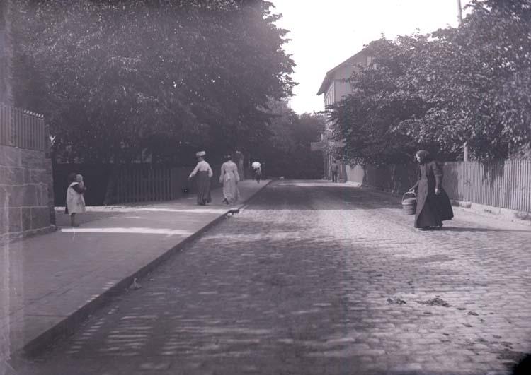 """Enligt text som medföljde bilden: """"Lysekil. Rosviksgatan Juli 1904."""""""