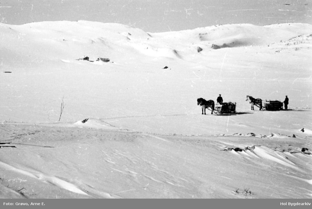Hestetransport, vinter, menn, Støl, slede, hestelass, Skurdalen