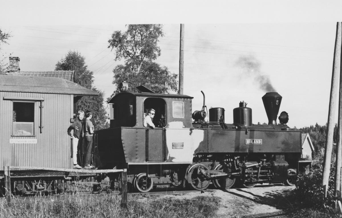 Tog på Fossum stasjon, trukket av damplok 6 Høland.