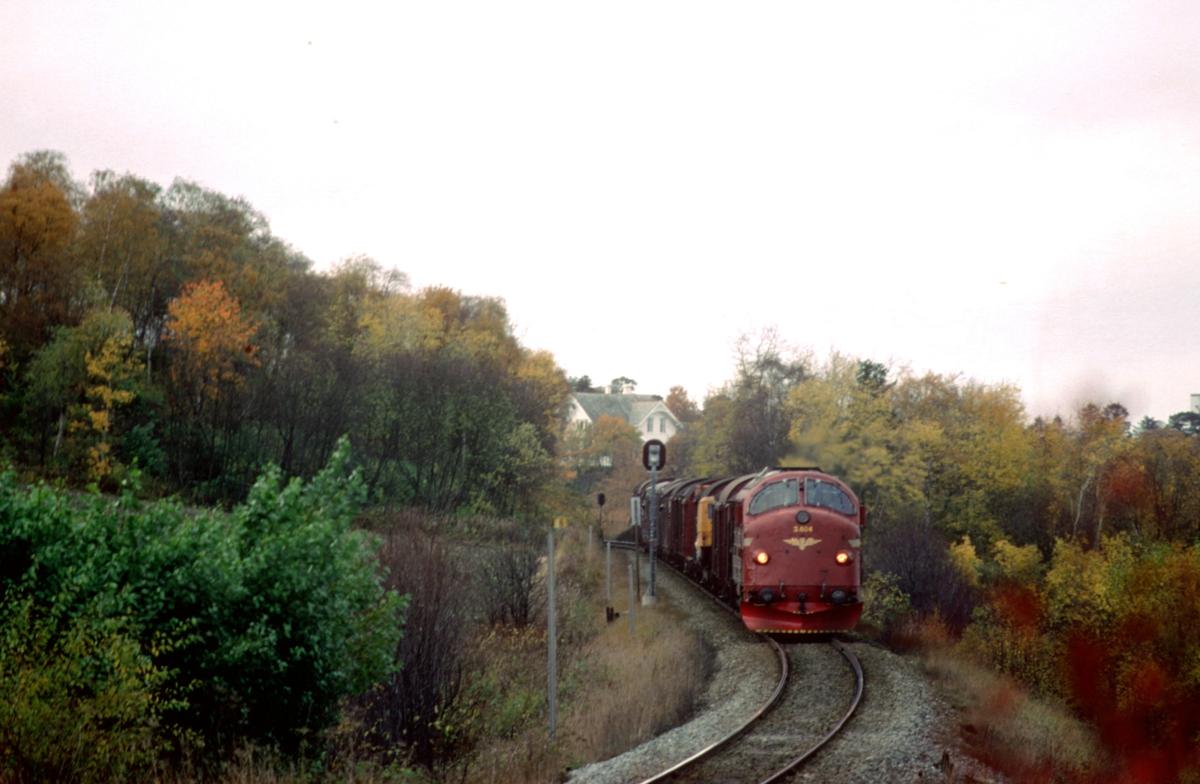 Godstog 5793 Trondheim - Bodø ved Rotvoll med NSB dieselelektrisk lokomotiv Di 3 604.