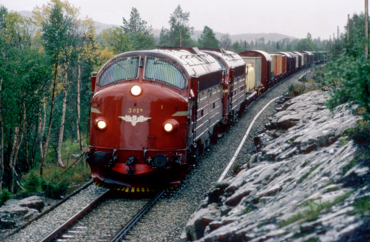 Godstog 5793, Trondheim - Bodø, med NSB dieselelektriske lokomotiver type Di 3. Fotostopp i Svenningdal.