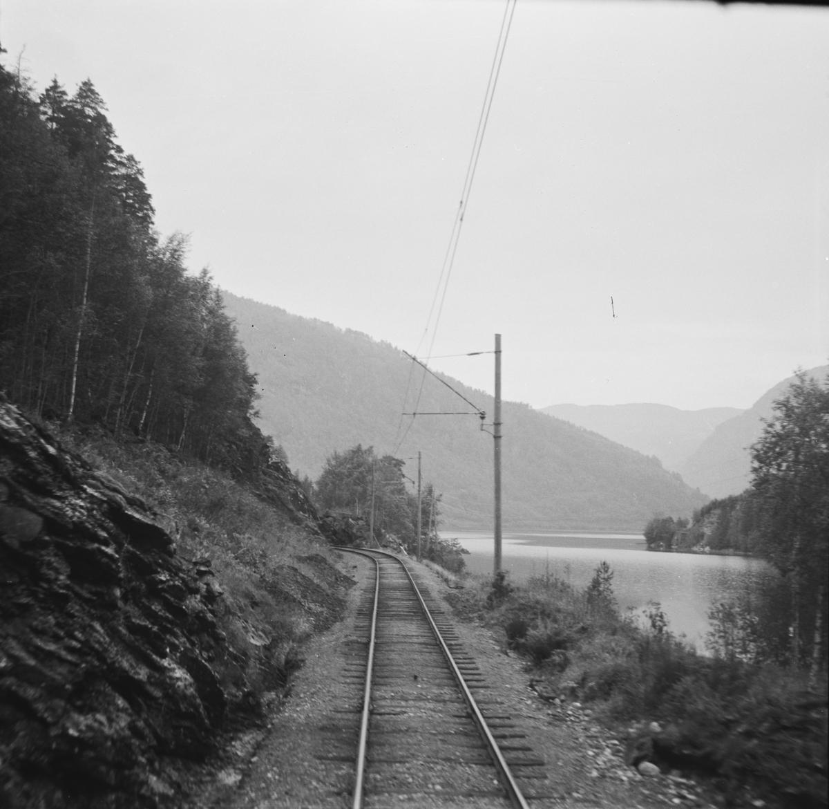 Fra Hardangerbana. Utsikt fra førerrommet på motorvogn type 64.