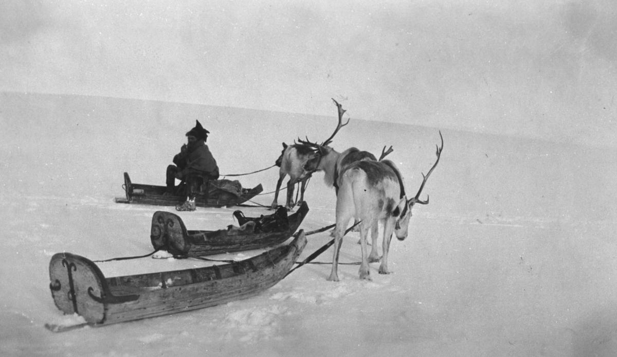 En same sitter på sleden sin på vidda trolig i Karasjok og røyker pipaen sin.. På bildet er det også to andre sleder og tre rein.