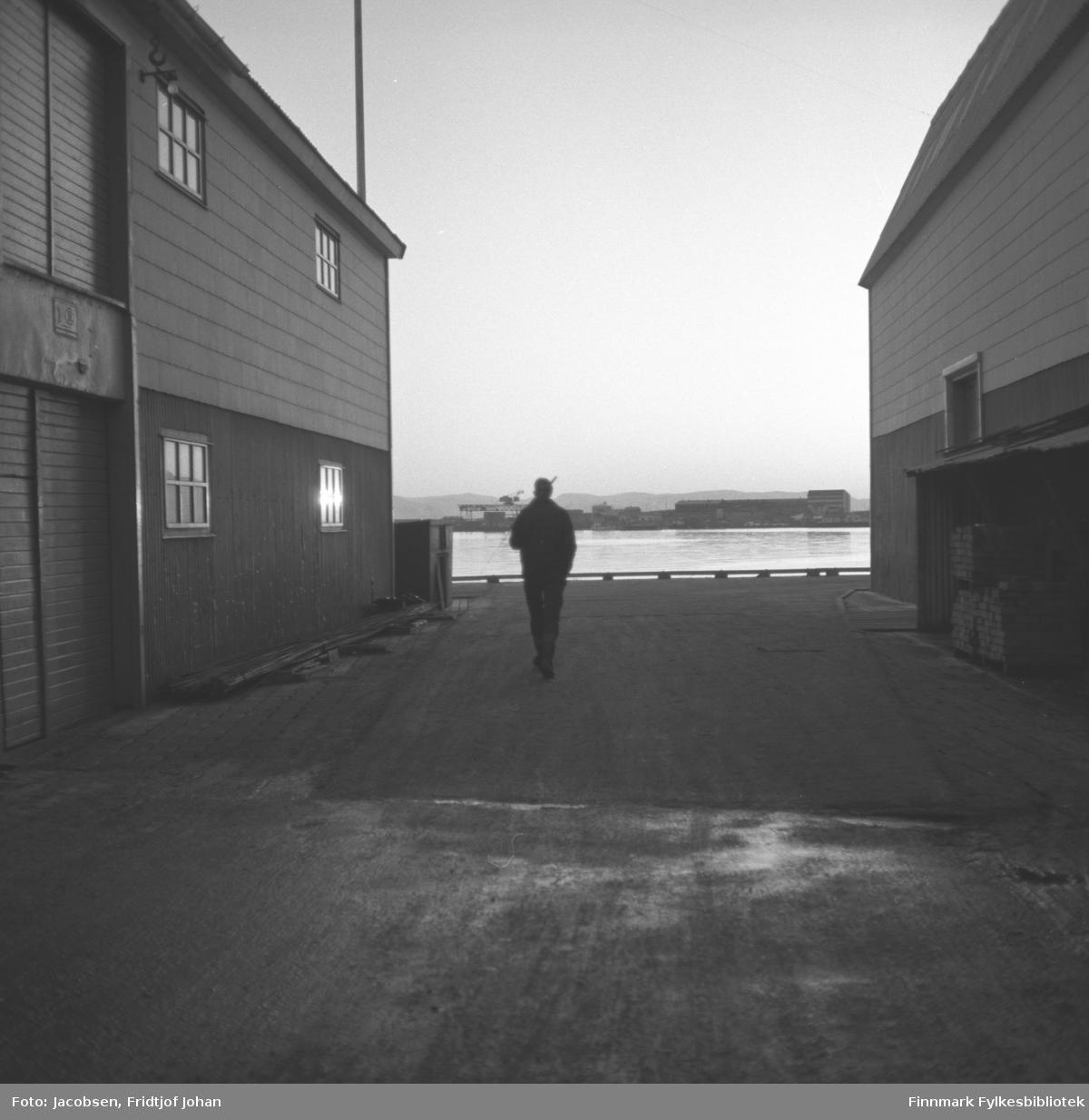 Arne Jacobsen har fiskestanga på skulderen og går nedover Hauankaia. Han har mørke klær på seg. De store byggene til Hauans materialhandel ligger på begge sidene av han, med materiallageret til høyre på bildet. På andre siden av havna/innseilingen til Hammerfest ses pakkhus og Kullkranen på Fuglenesodden. Diffust i bakgrunnen ses fjellene på Sørøya.