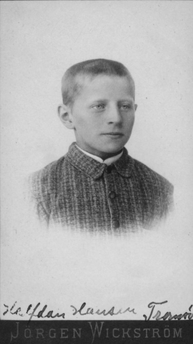 Portrett av en gutt, Halfdan Hansen, ca. 8-10 år