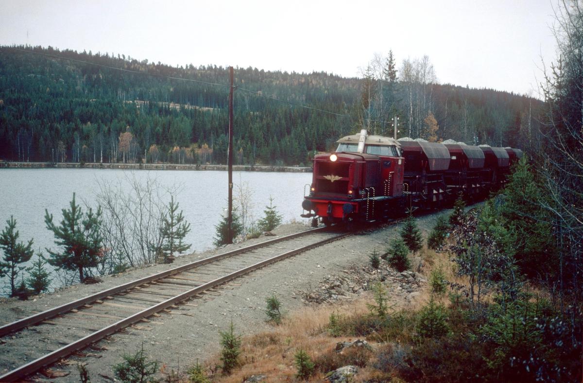 Pukktog ved Trevatn med dieselhydraulisk lokomotiv type Di 2.