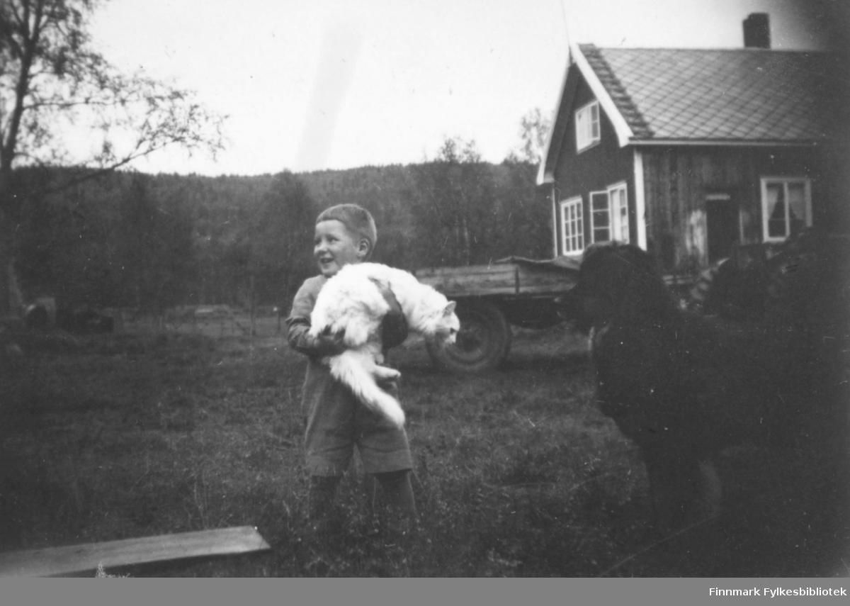 Ole Arve Wisløff som liten gutt. Han holder en hvit katt, trolig familiens. Ved siden av står Kristian Wisløffs hund. Bildet ser ut til å være tatt utenfor deres hjem. I bakgrunnen ser vi deres bolig, en traktor med en tilhenger og tett skog. Ca.1945-50.