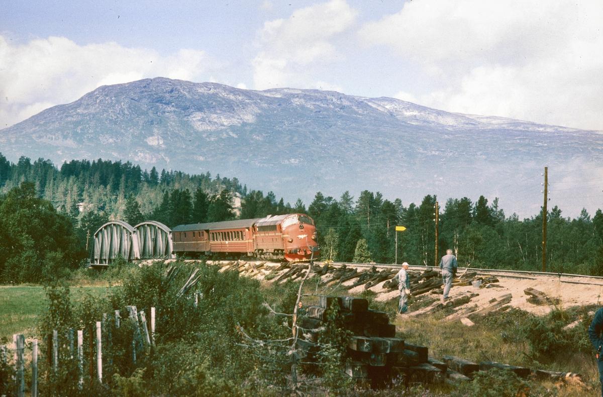 NSB persontog 354 Åndalsnes - Dombås på vei inn mot Bjorli stasjon. Saktekjøring på grunn av sporarbeider.