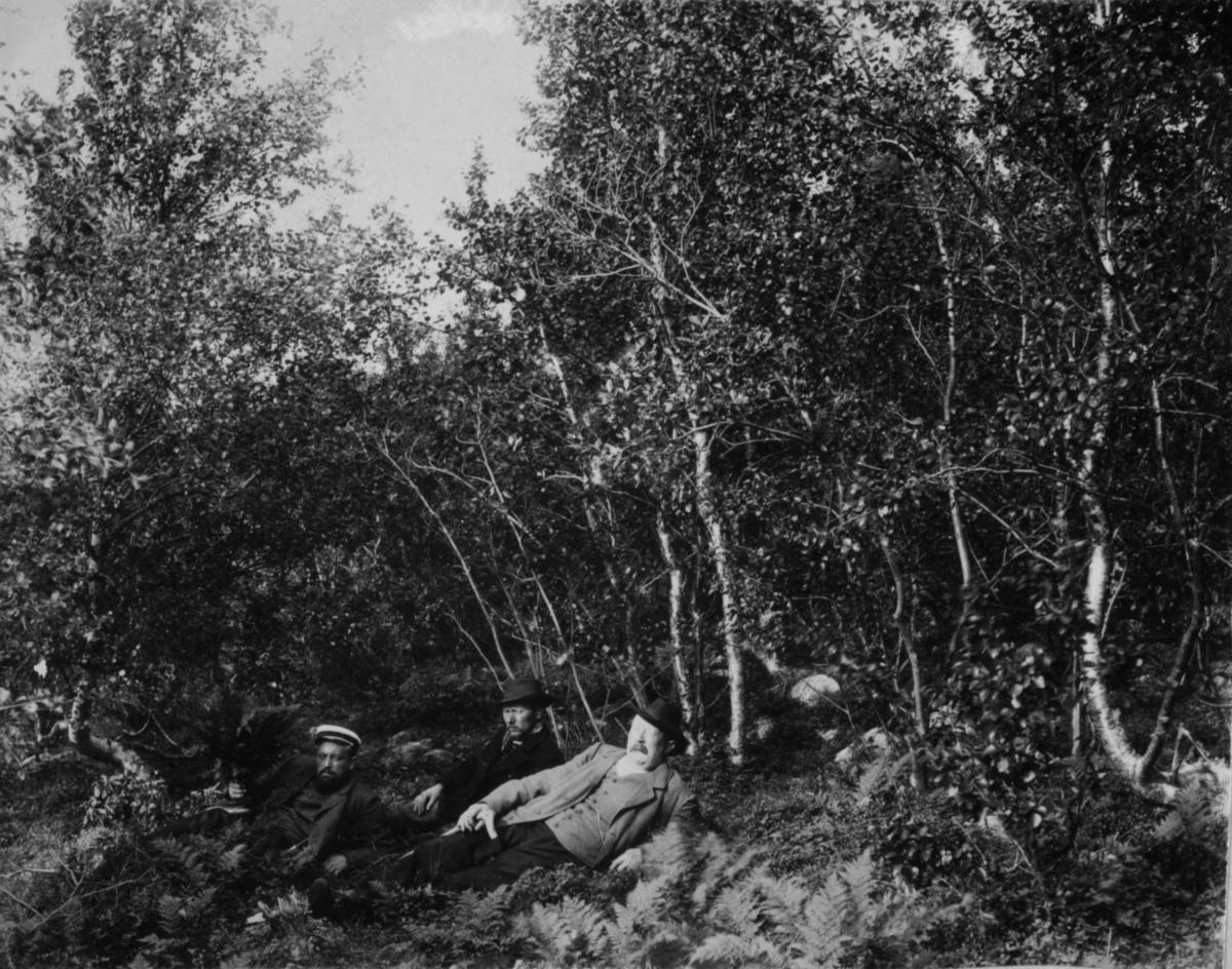 Tre menn som ligger på bakken i skogen.