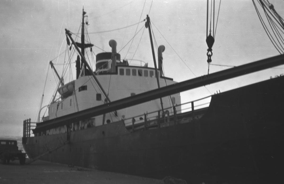 Et stort frakteskip ved kai i Vadsø.