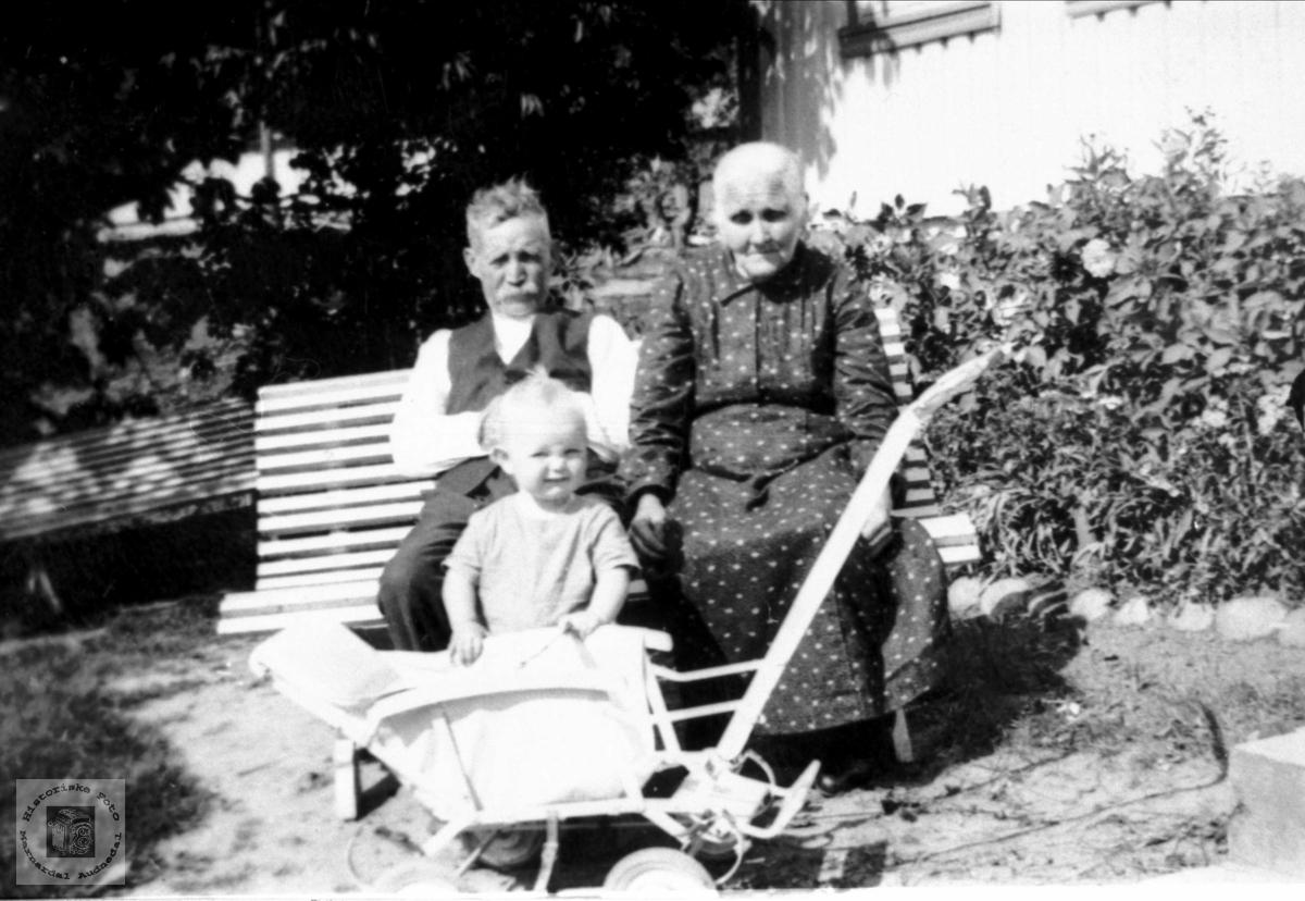 Hos bestefar og bestemor