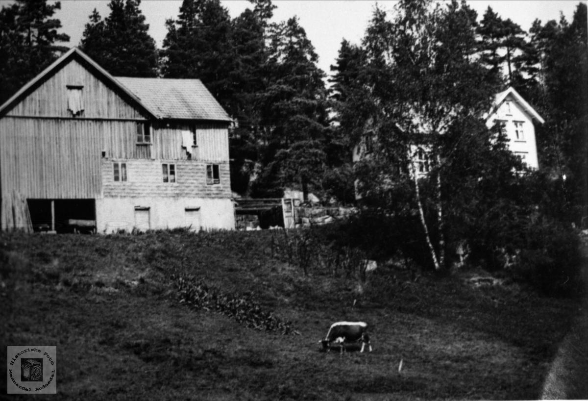 """Garden Øvrevoll eller """"Brotan"""" på Foss."""