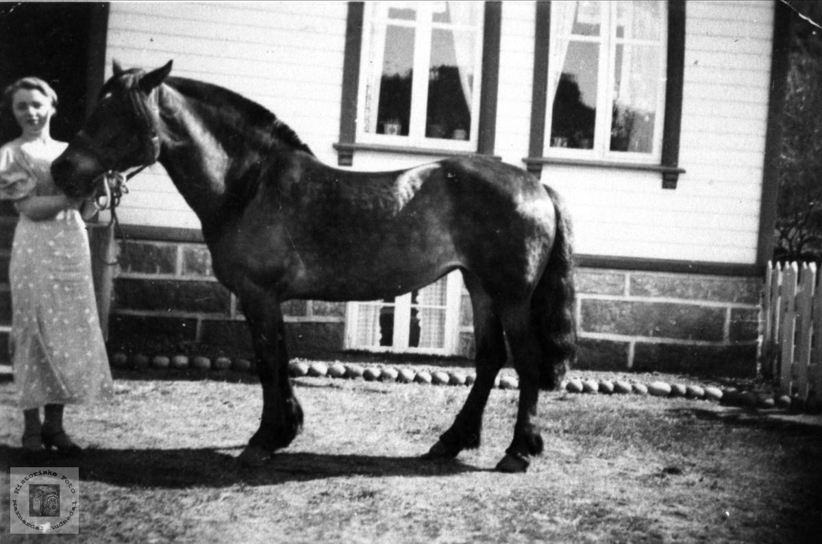Dame med hest. Astrid O. Abelset, f. Lauvdal.
