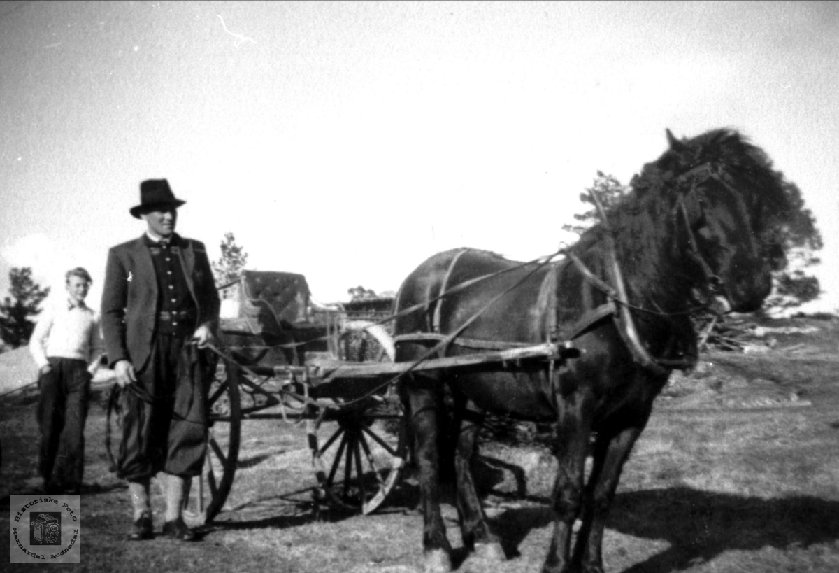 Hest og karjol. John, Knut og Torkel Follerås.