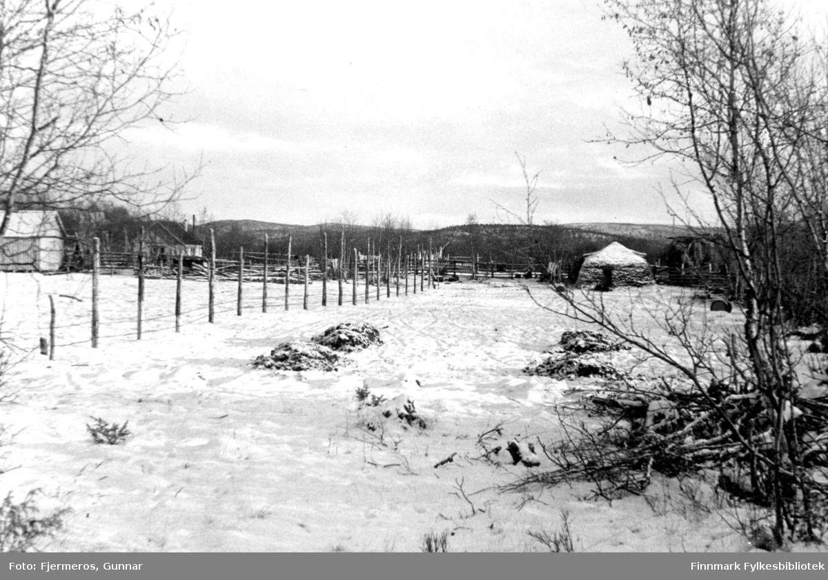 Et vinterlig bilde fra Ridonjarga i Karasjok, tatt i 1947.