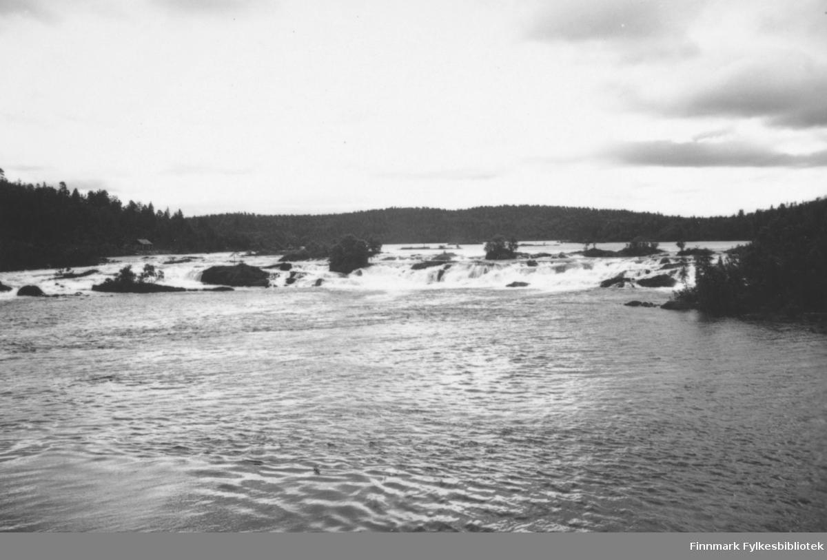 'Skogfoss, Pasvikelven' B 7802