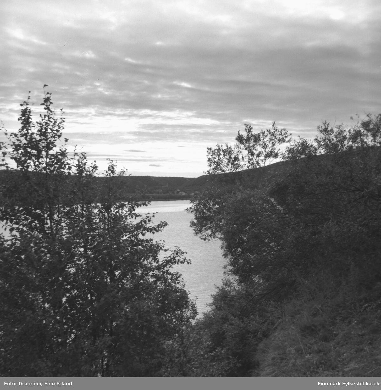 Utsikt mot Arvolaneset (Steinnes)
