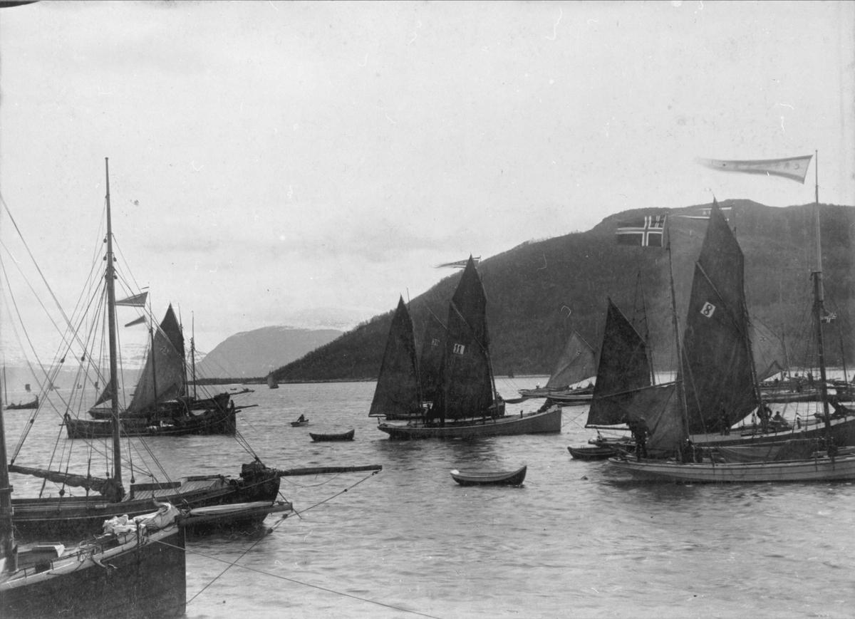 """Båter på Harstad havn under """"Harstadregattaen"""" i 1891."""