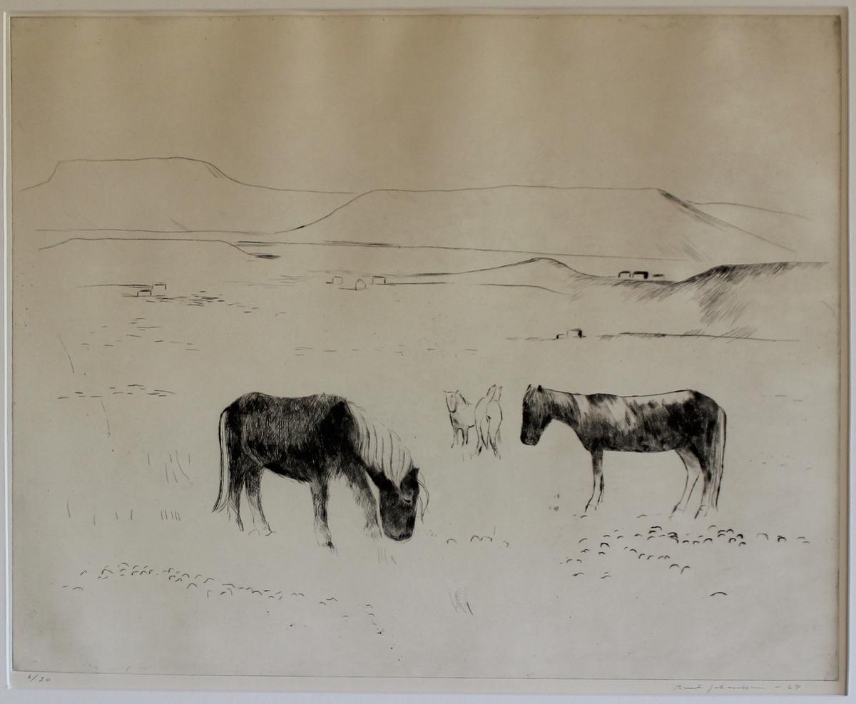 Landskap med hästar,Island [Gravyr]