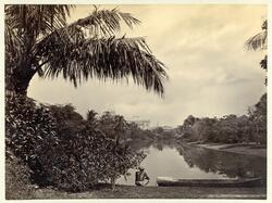 Eden-garden i Calcutta