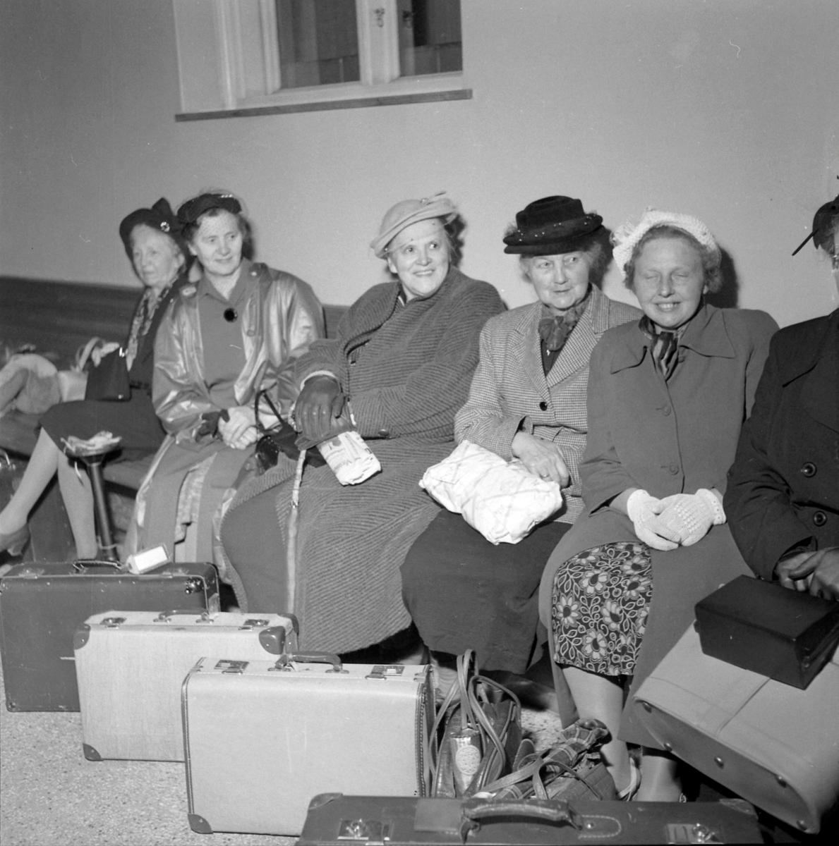 Husmødre på ferietur til Dovrefjell