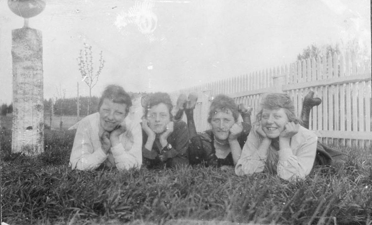 4 kvinner i gresset ved et hagegjerde