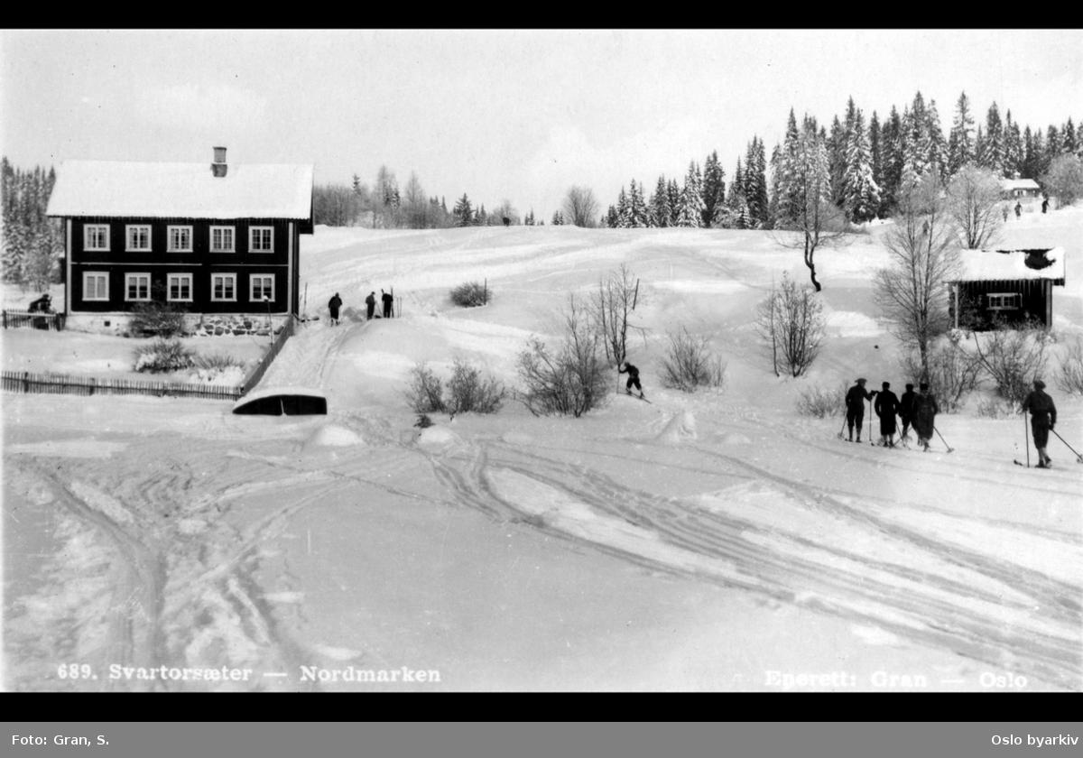 Folk på ski, vinter
