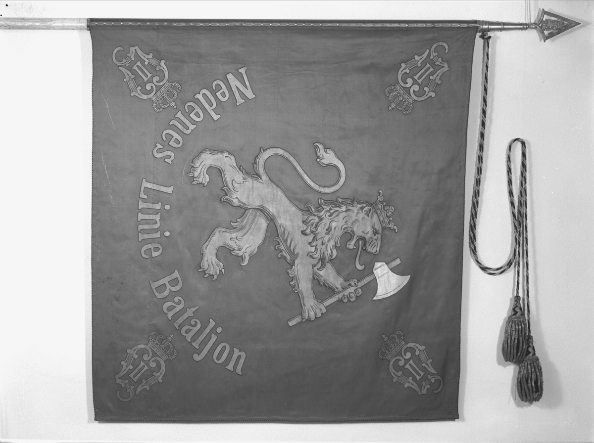 Kristiansandske infanteribrigade. O.II. Nedenæs Linie Batailon. Silkefane.Midt på Den norske løve. I hjørnene kronet OII monogram. Banderoler med kvaster. Spiss med kronet O II.