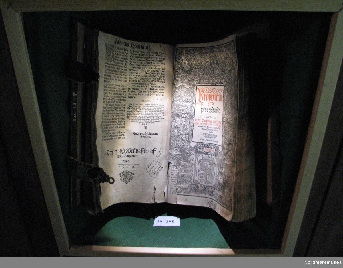 Stor bibel, med illsutrerte sider og gotisk skrift. Permen er gått i stykker bak og den bærer preg av å ha vært oppslått svært lenge.