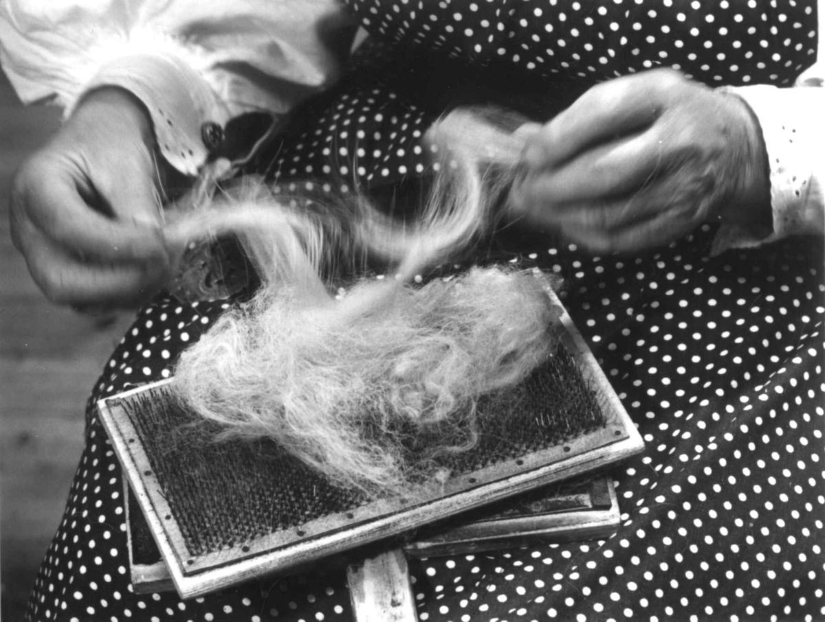 Jorunn Rysstad demonstrerer karding av ull og en tredjedel kyrehale til ladder (nålebinding). Rysstad, Valle, Aust-Agder 1968.