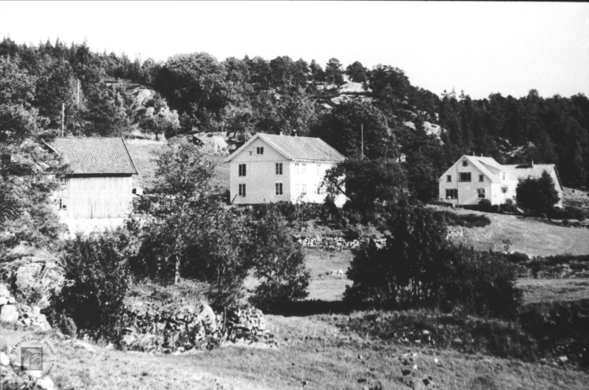Surteland i Øyslebø.