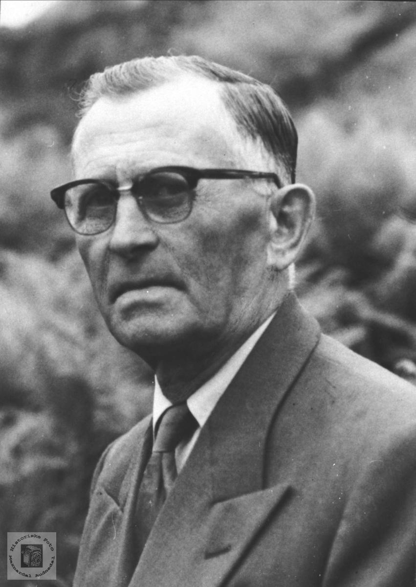 Portrett av Oskar Haukom, Sira.