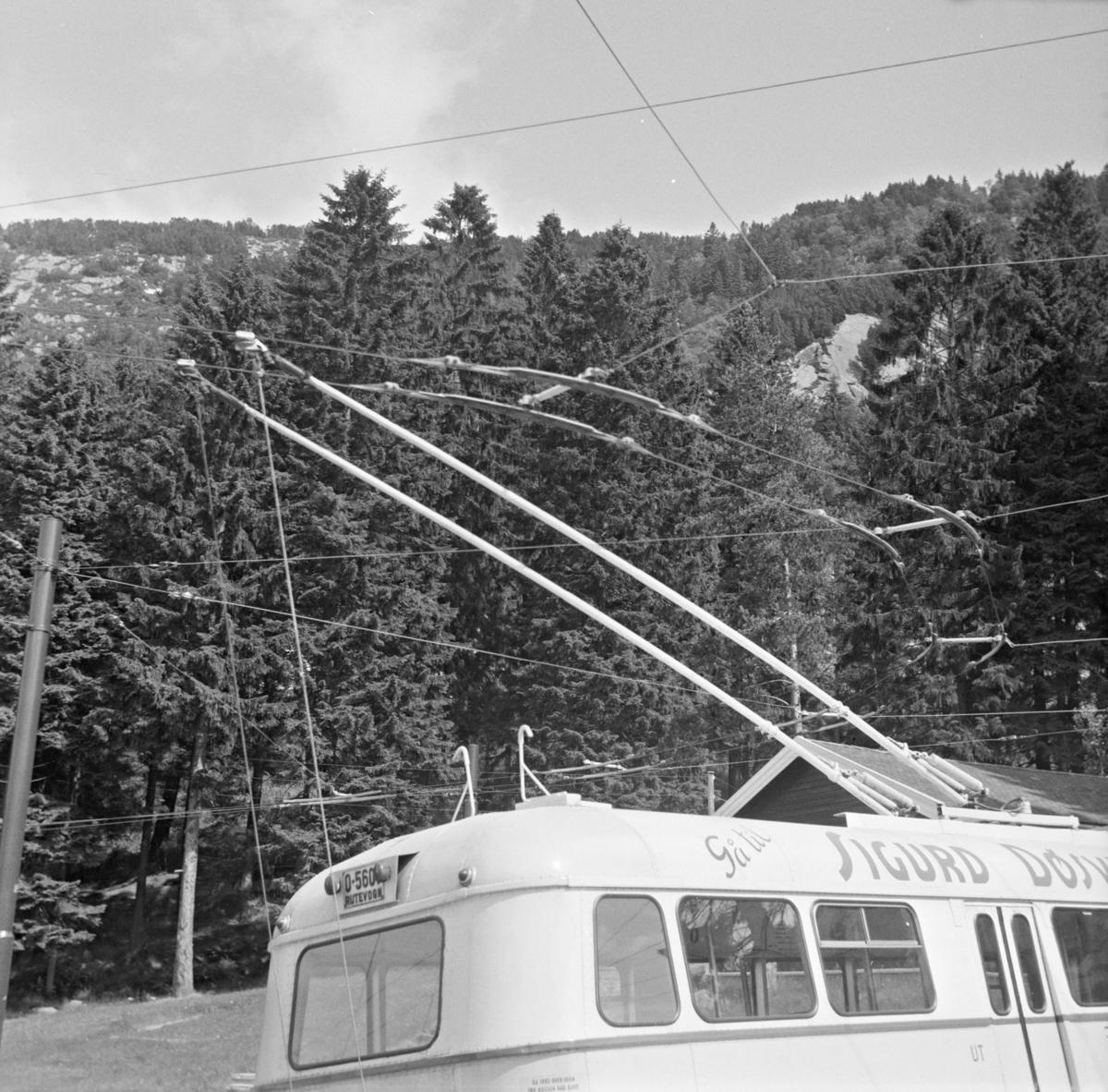 Strømavtakeren på en trolleybyss type Munch i Bergen