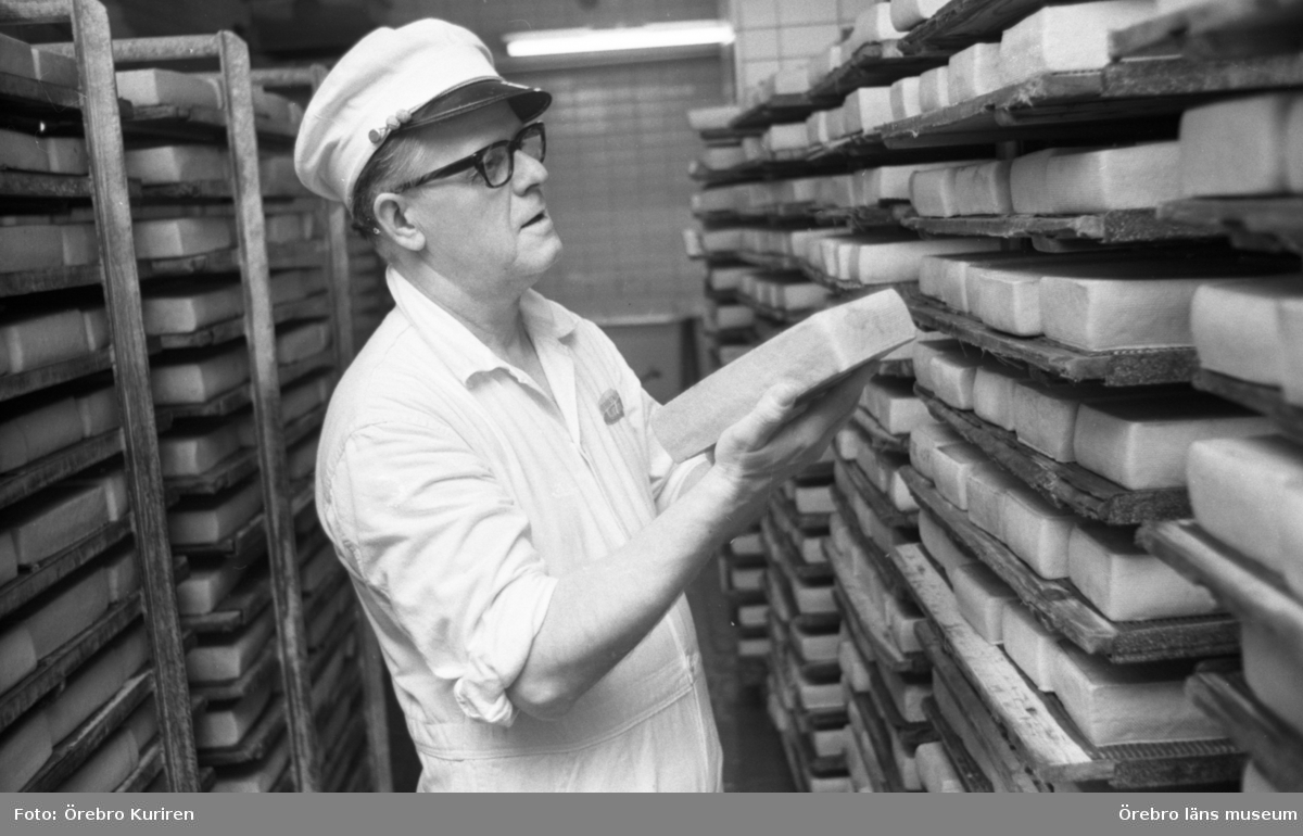 """Jordbruksnummer, 12 mars 1969.Ostmästare Helge Johansson kontrollerar att lagringen av ostsorten """"regent"""", mognar normalt."""