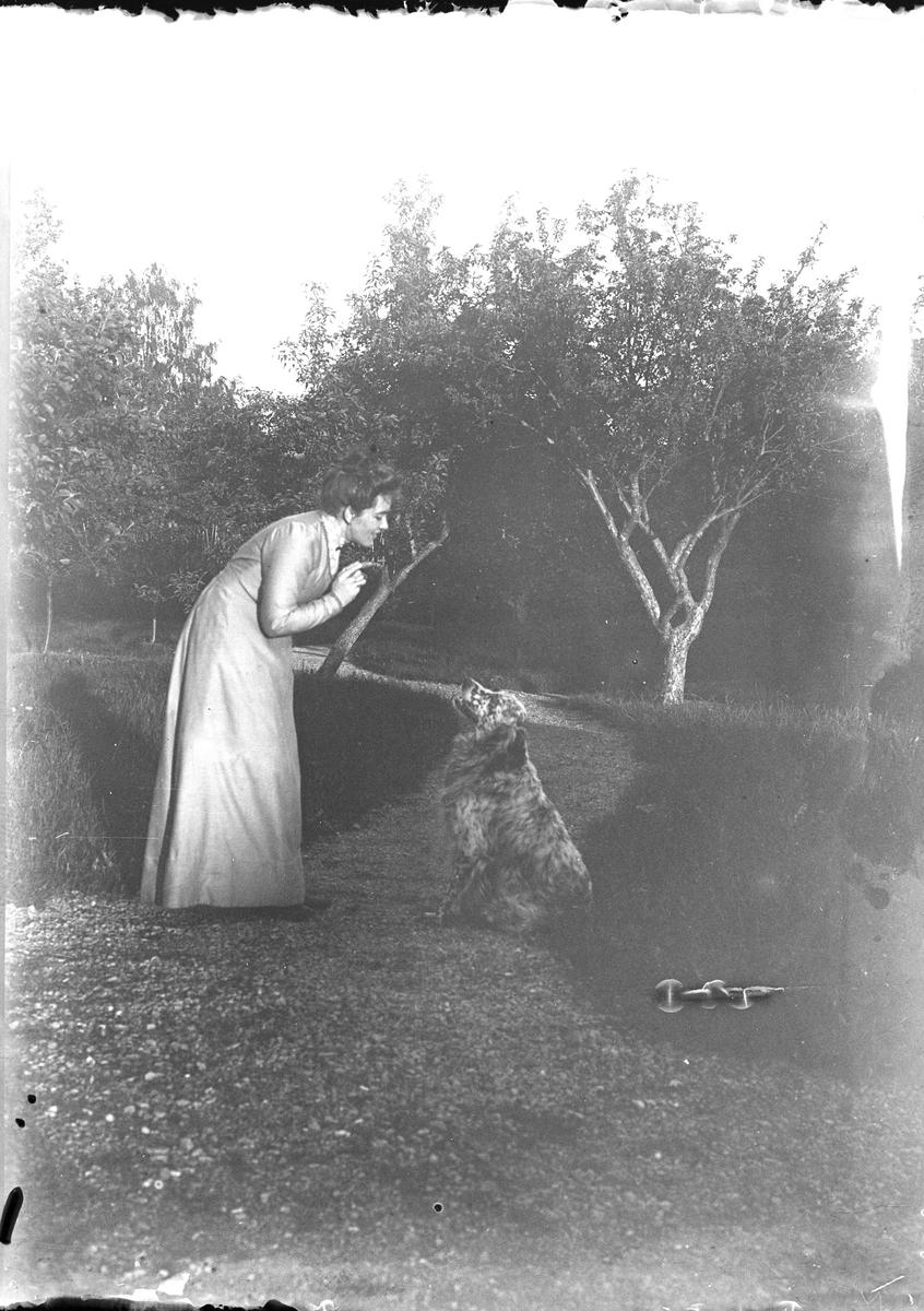Julie Mathiesen bøyer seg mot en hund og snakker med den. Hunden sitter pent og ser mot kvinnen.De er i en frukthage på Linderud Gård.