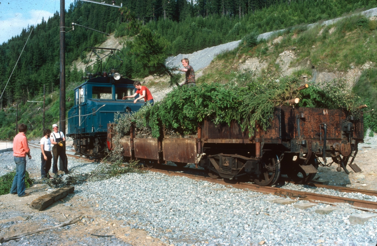 Dugnadsarbeid i forbindelse med idriftsettelse av ny museumsjernbane. Vegetasjonsrydding.