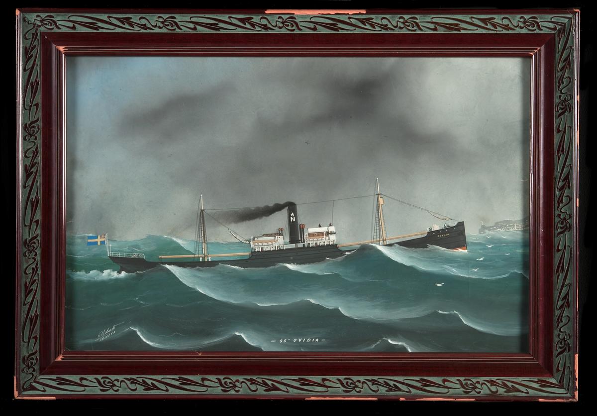 """Gouache med lastångfartyget """"SS OVIDIA"""" i hög sjö gående för maskin och med seglen beslagna, besättningen stående på kommandobryggan. Nordstjernans bolagsmärke på skorstenen. I aktern svensk flagga med unionsmärke.  I bakgrunden, framför fören, ses Genuas angöringsfyr och hamnen till höger om denna."""