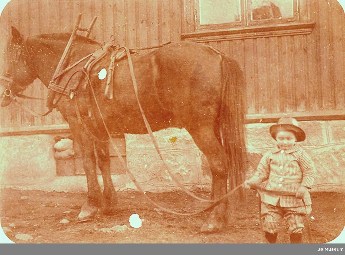 Sveinung S. Haugerud, Gvarv,  som liten gut med hesten på Haugerud
