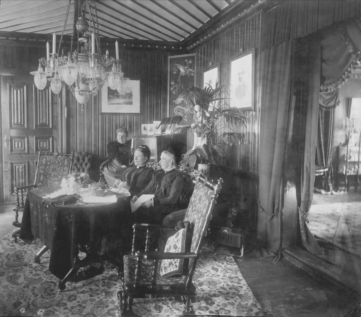 Damene på Strandheim gård i stua.