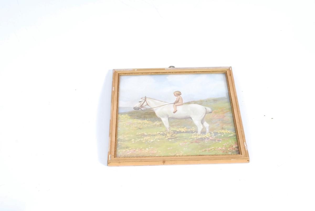 lite barn som sitter på en hvit hest