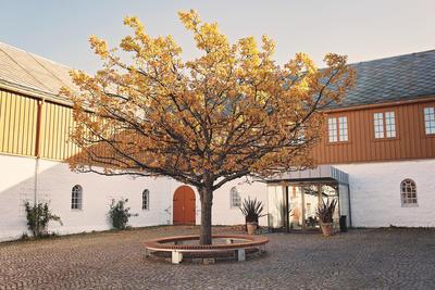 Tunet høst. Foto/Photo