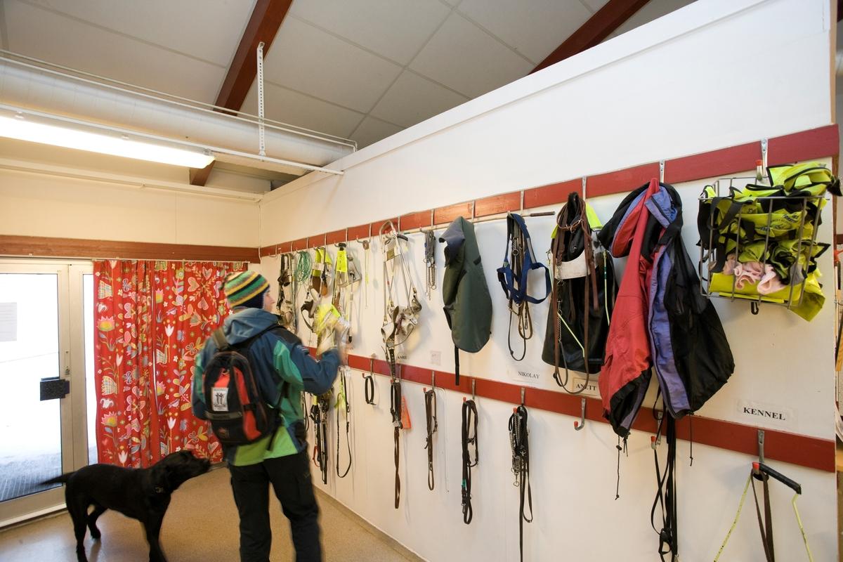 Førerhundskole. Utstyr til hundene henger på veggen.