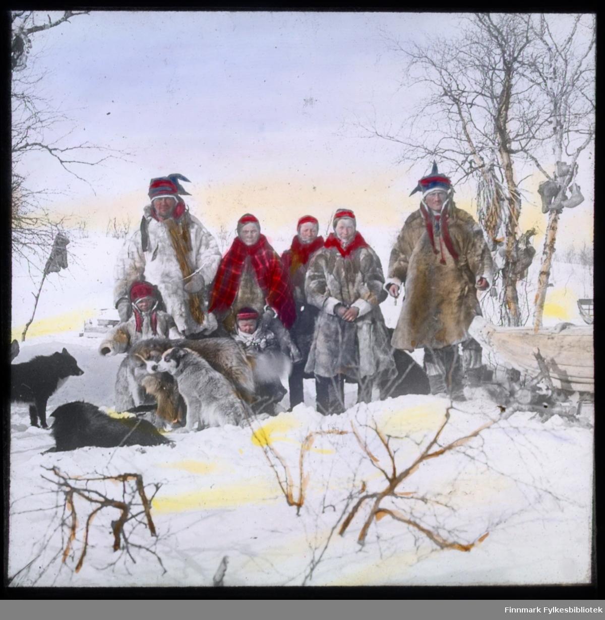N.546 a) Kautokeino-samer står det på glassnegativet. En hel familie står oppstilt for fotografen. To menn og tre kvinner i vinterpesk, med samiske sjal og luer. Flere små barn er med på bildet og en flokk hunder sitter og ligger rundt familien. I treet til høyre ser man skaller (samiske sko) som henger i trærne. En slede er også plassert i høyre billedkant. Glassnegativet er håndkolorert.