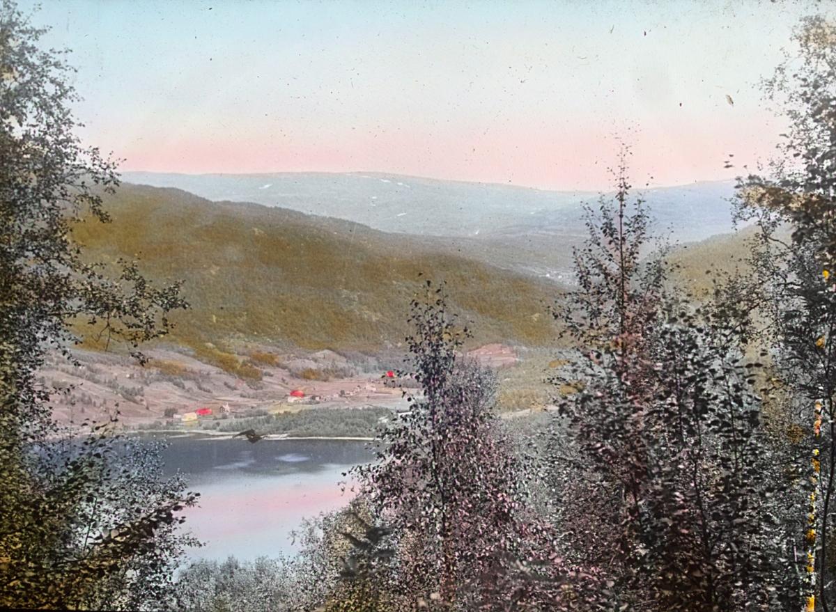"""""""N.539.b) Vassbotn i Salten."""" står det på glassplaten. Landskap håndkolorert av Alf Schrøder."""