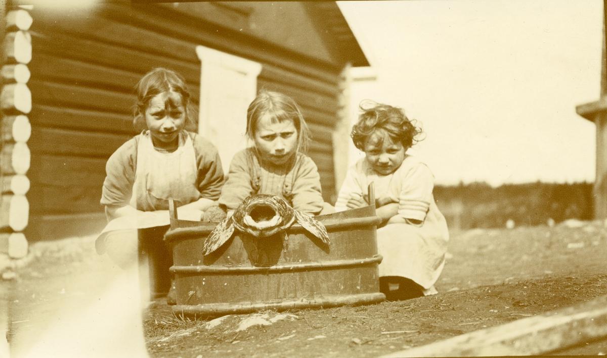 Tre jenter i Galåsen sittende foran kar m/stor gapende fisk oppi.  Fra venstre: Målfrid Hauge f. Galaasen (1914), Ingebjørg Buflod f. Galaasen (1915 - 1999) og Elfrid Busk f. Galaasen (1919 - 2010)