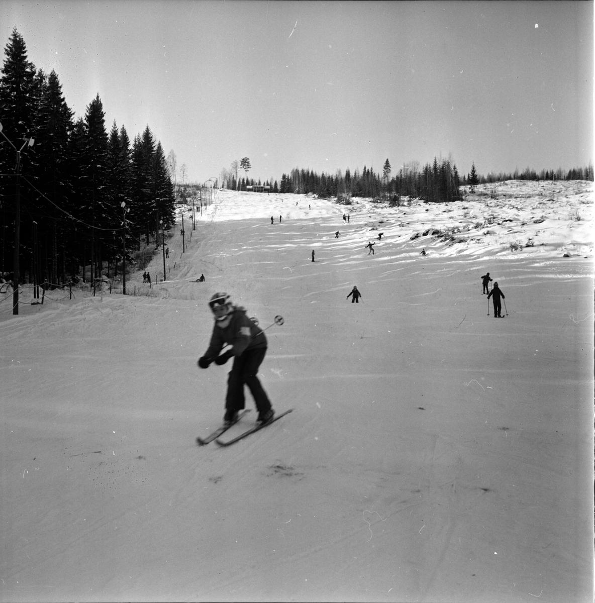 Koldemoåsen i Arbrå  1973
