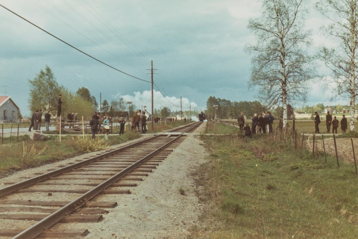 Fotokjøring på Solørbanen med SJKs veterantog. Damplok 26c nr. 411.