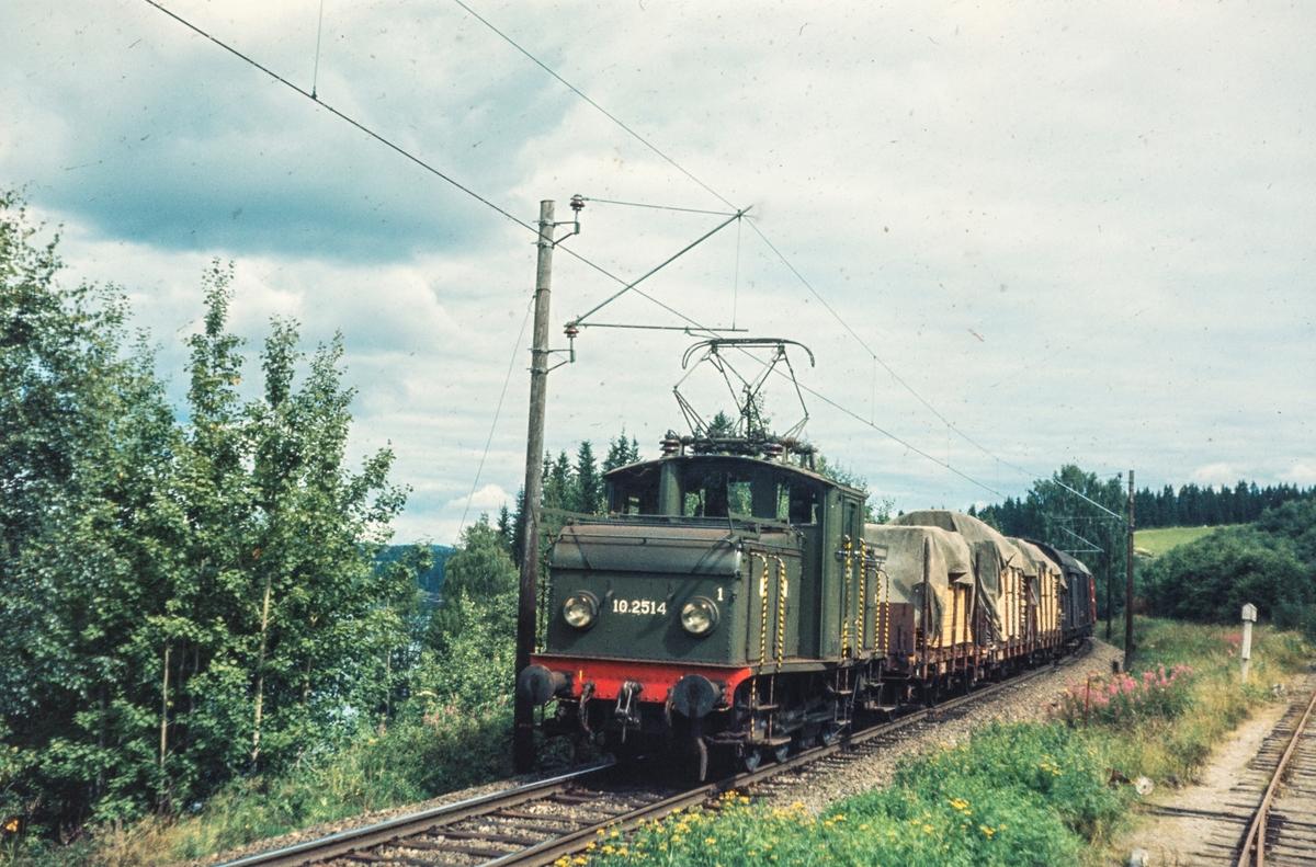 """Godstoget """"Planken"""" fra Årnes til Oslo passerer ved Bingsfoss mellom Blaker og Sørumsand. Toget trekkes av elektrisk lokomotiv El 10 2514."""